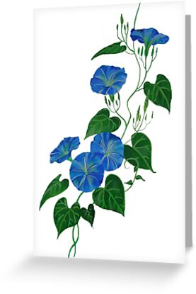 Victorian Style Blue Bindweed Wildflower  by taiche