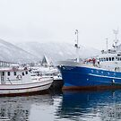 Boats in Tromso by Dominika Aniola