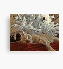 Tired of Waiting For Santa Canvas Print