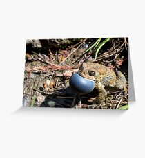 American Toad Loud and Proud Greeting Card