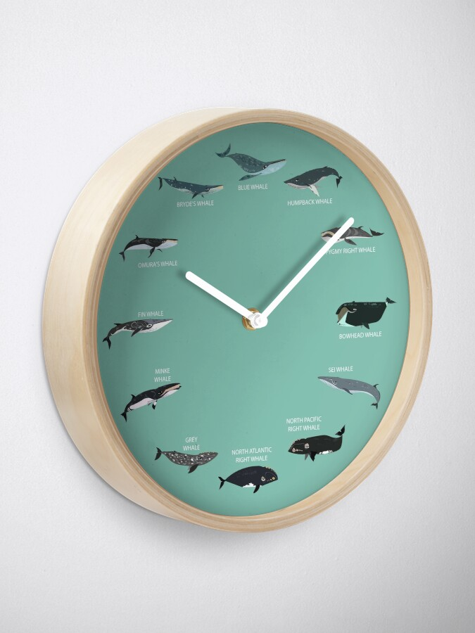 Alternate view of Baleen Whales Clock