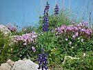 Flower arrangement by Moshe Cohen
