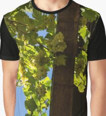 Overhead Grape Harvest - Summertime Dreaming Of Fine Wines - A Vertical View Graphic T-Shirt