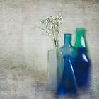 Bottles and Blur by Janet Broughton