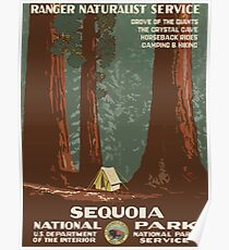Sequoia National Park Vintage Travel Poster Poster