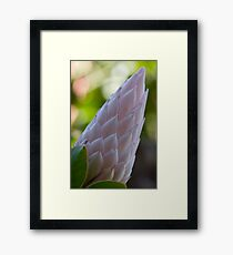Crown MK II Framed Print