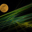 NORTHERN LIGHTS  by Madeline M  Allen