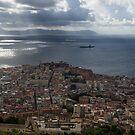 A Birds-eye View of Naples Italy by Georgia Mizuleva