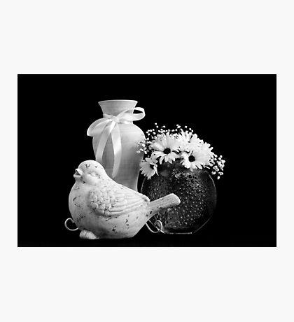 Vase, Bird And Daisies Photographic Print