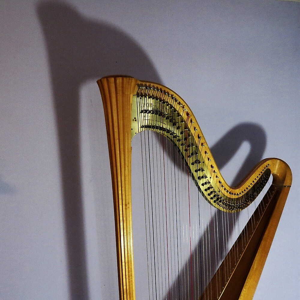 Harp and Shadow by Roger Easley