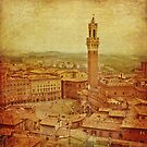 Vintage Tuscany, Siena aerial view by gameover