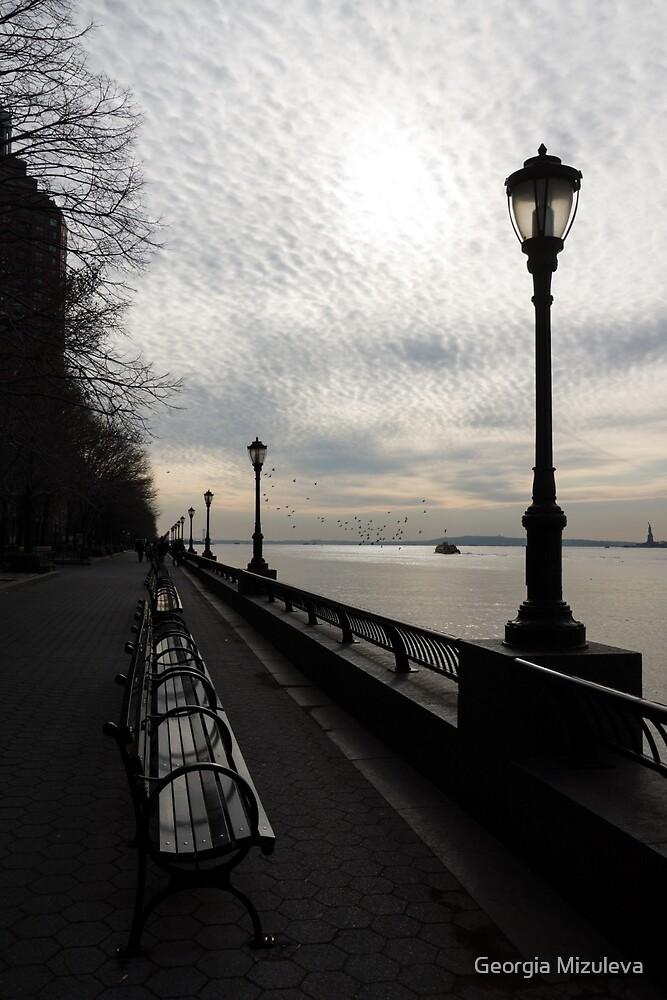 A Quiet, Peaceful Esplanade - New York City, Hudson River by Georgia Mizuleva