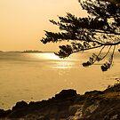 « Coucher de solei sur la baie @ Sol'So Photografée » par Marianne Sol'So
