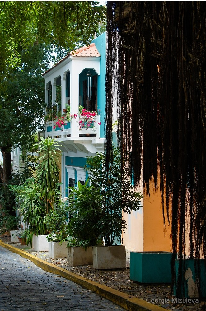 San Juan, Puerto Rico - Gorgeous Caribbean Colors and Flora by Georgia Mizuleva