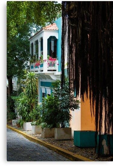San Juan, Puerto Rico - Gorgeous Caribbean Colors and Flora by Georgia Mizuleva
