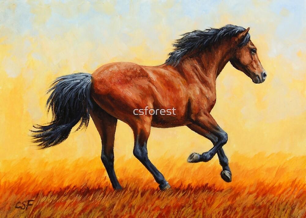Bay Running Wild Horse by csforest