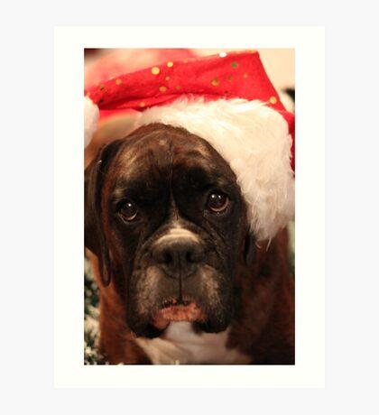 Die Grüße der Jahreszeit - Boxer Dogs Series Kunstdruck