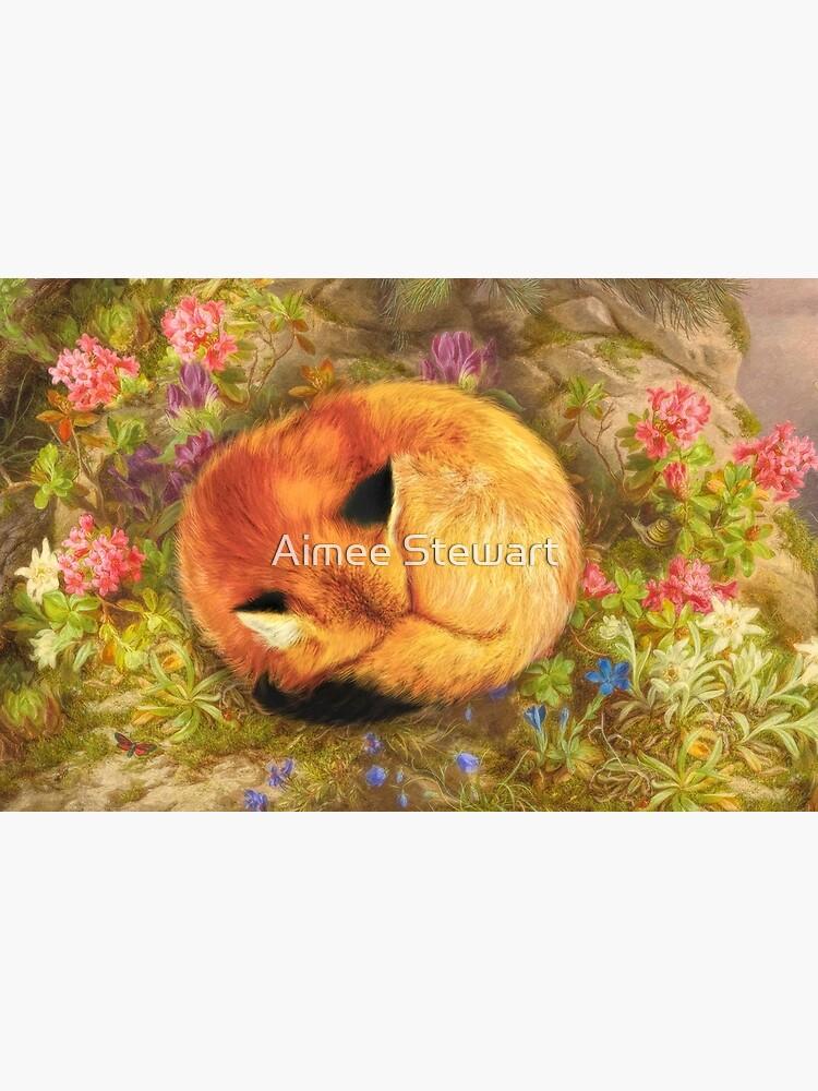 The Cozy Fox by Foxfires