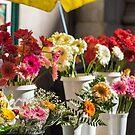 Flower stall in a Lisbon market by SteveHphotos
