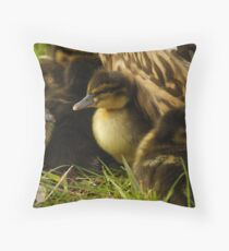 Baby ducks Throw Pillow