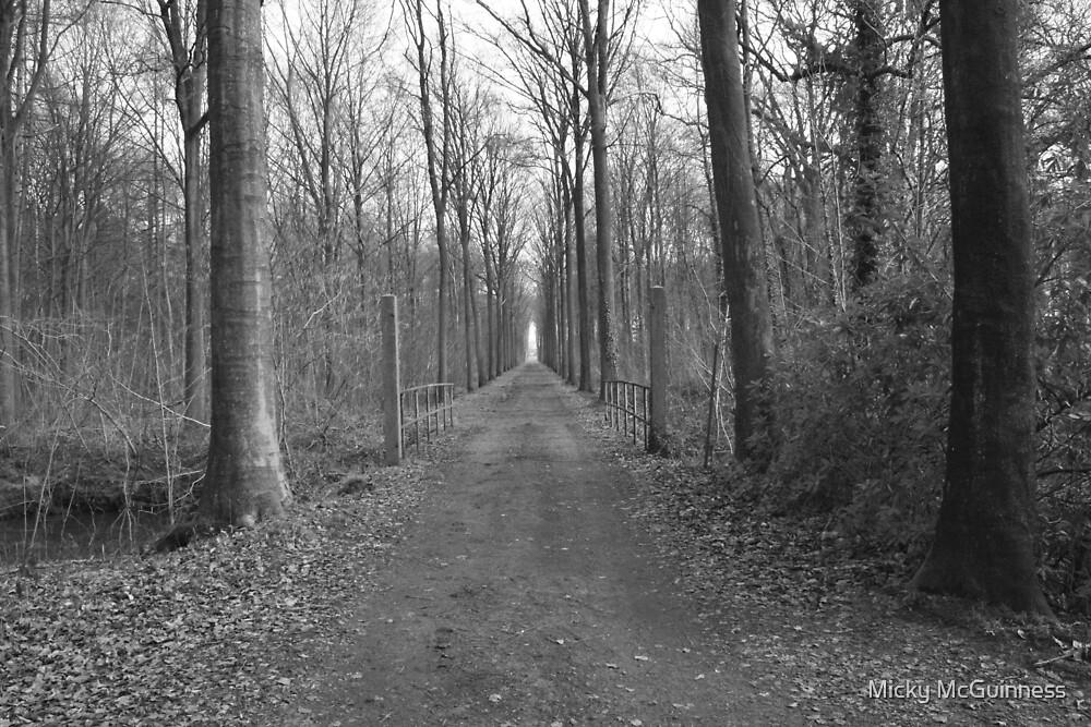Brug in het bos by Micky McGuinness