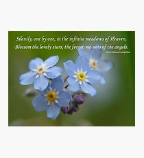 The Forget-Me-Nots of the Angels Greeting Card Quote Photographic Print