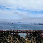 San Francisco by Laura Puglia