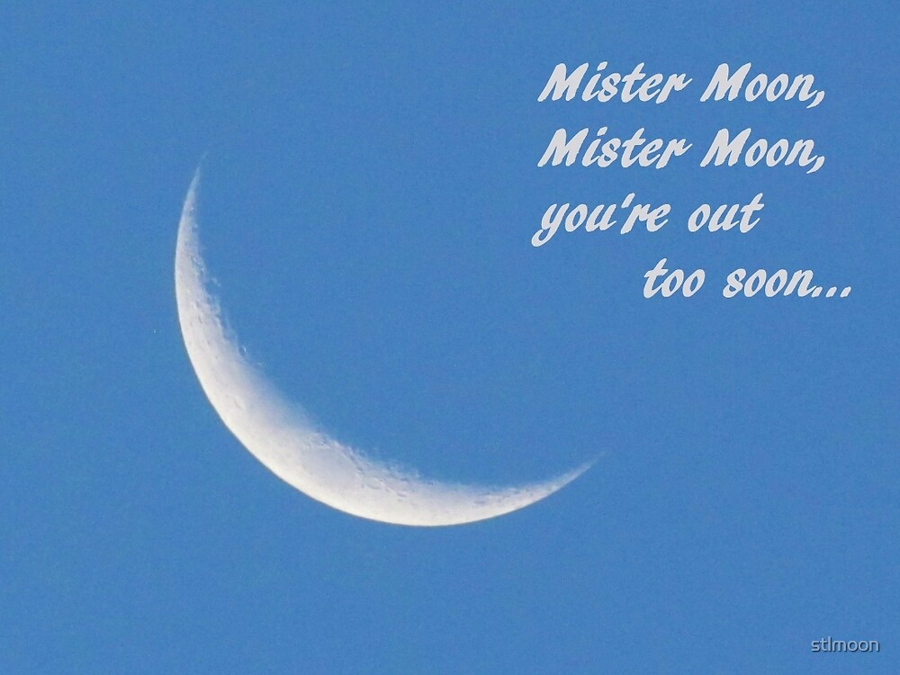 Mister Moon, Mister Moon, you're out too soon by stlmoon