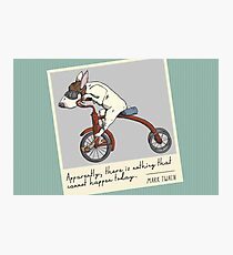Bull Terrier Dog Tricycle Riding Photographic Print