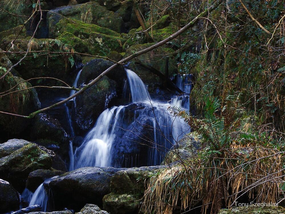 Lodore Falls by Tony Szeghalmi