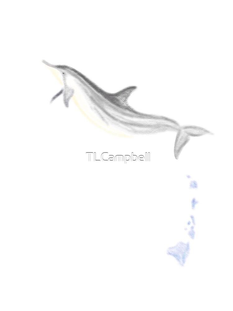 Hawaiian spinner dolphin splash by TLCampbell