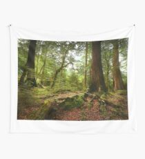Red Beech forest, New Zealand Wall Tapestry
