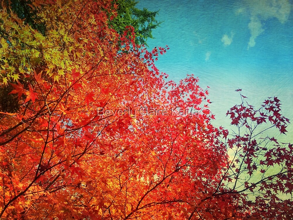Vivid Autumn Maple Leaves Painterly Textures by Beverly Claire Kaiya