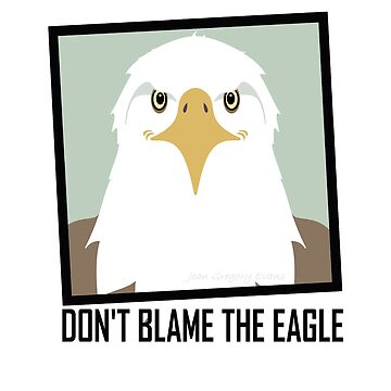 DON'T BLAME THE EAGLE by jgevans
