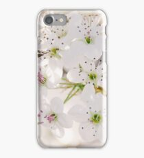 Pear Blossoms 5 iPhone Case/Skin