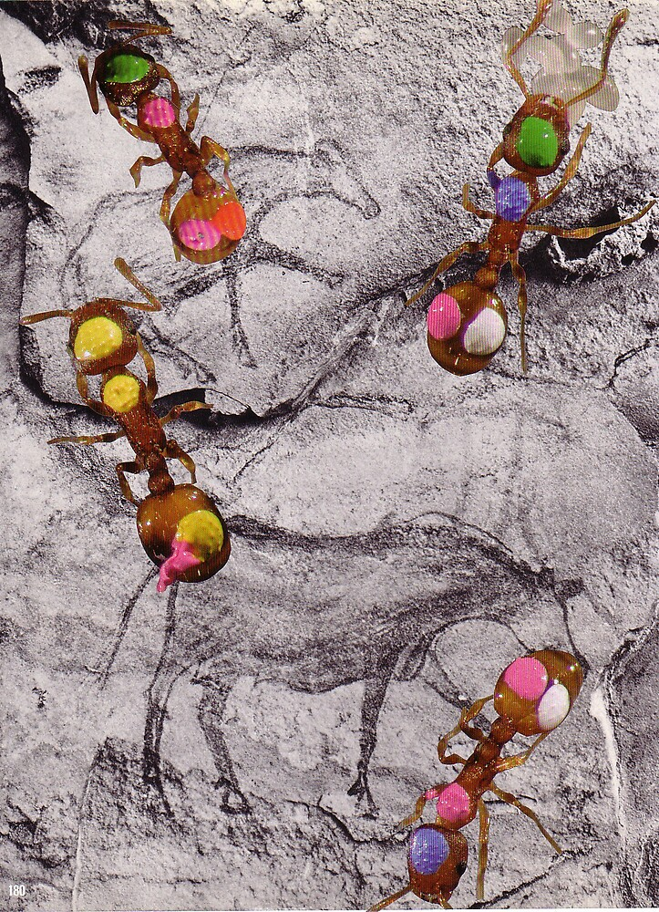 Dot Painting with Ants by atomikboy