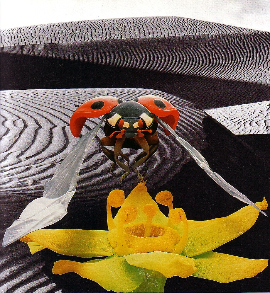 The Ladybug Picnic  by atomikboy