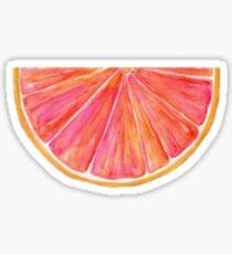 Watercolor Citrus Sticker