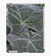 Purple Empress Tree Leaves Close Up iPad Case/Skin