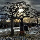 The Long Cold Sleep... by TheNatureOfThings