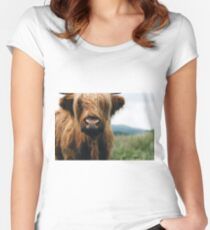 Scottish Highland Cow in Scotland Women's Fitted Scoop T-Shirt