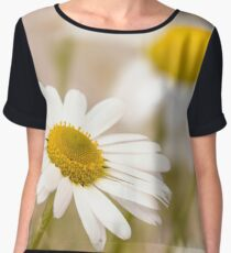 Sunny Summer Women's Chiffon Top