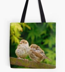 Sleep My Brother...I'll Keep Watch! - Sparrows - NZ Tote Bag