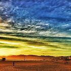 Venice Beach 1/28/16 #1 by Will Craig