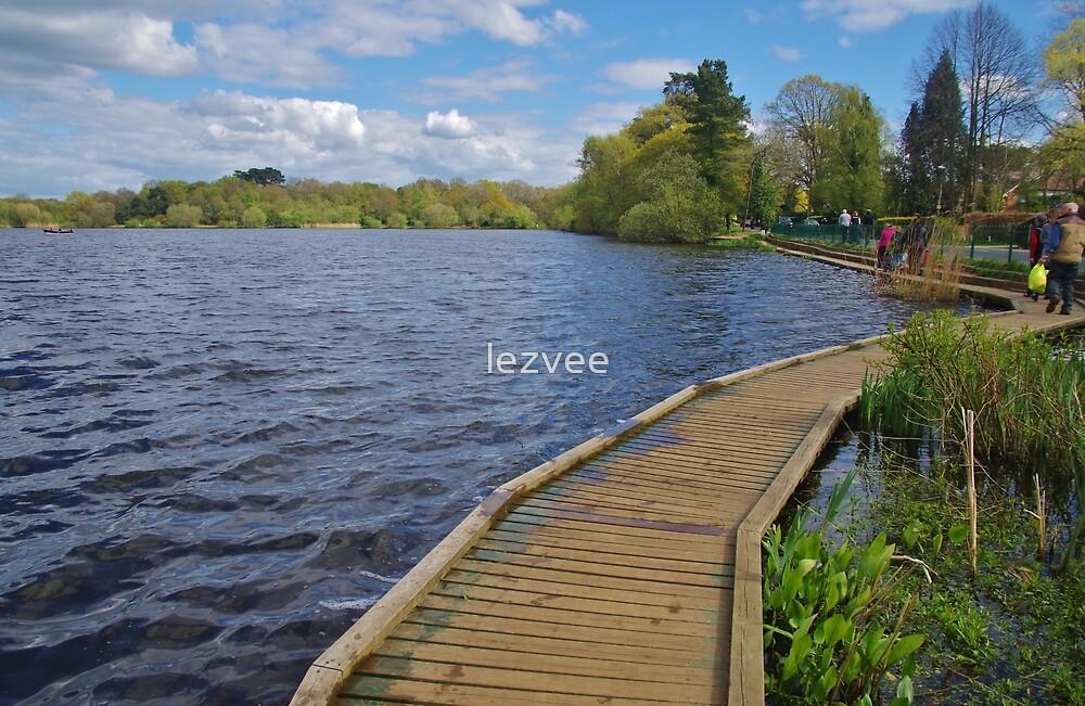 The Boardwalk at Petersfield Heath Pond by lezvee