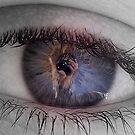A Camera Eye by Bridget Peterson