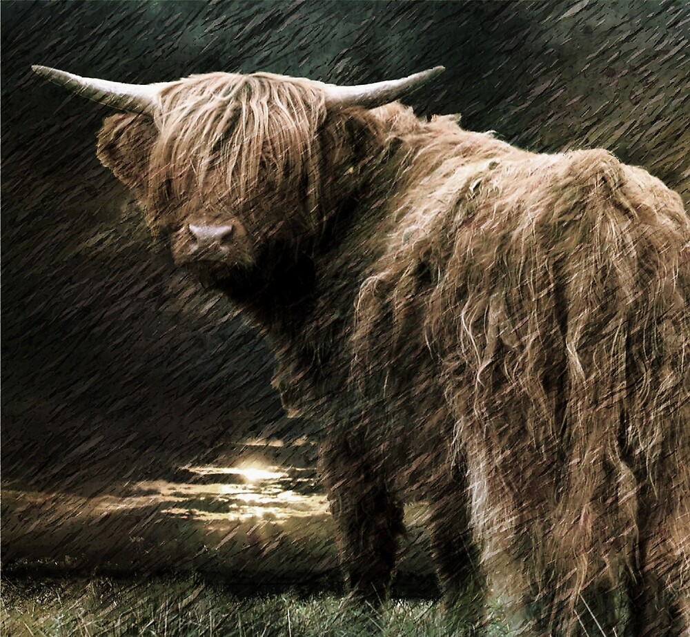 Braving the storm by Alan Mattison