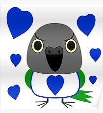 オウムLulu, the Senegal Parrot, with blue hearts Valentine's Day Poster
