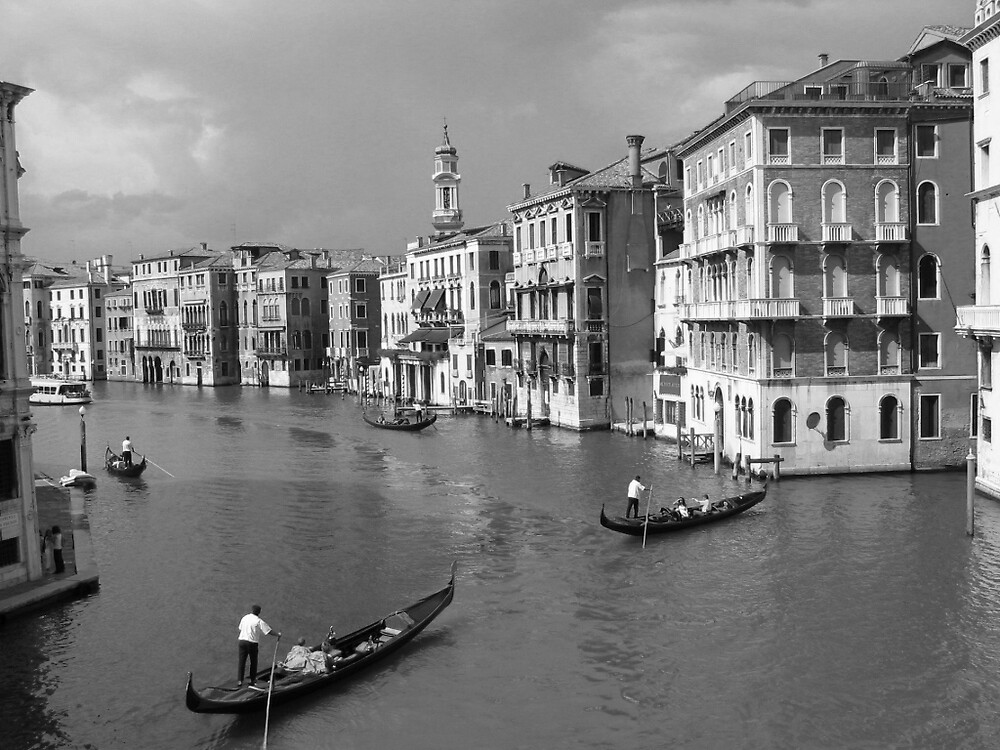 """""""Venice"""" what more can you say by image"""