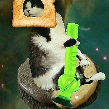 trendy cat by taco-elgato